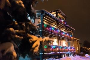 Zima a Vánoce